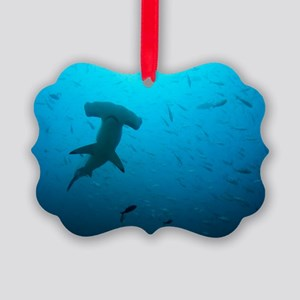 Hammerhead shark Picture Ornament