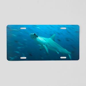 Hammerhead shark Aluminum License Plate
