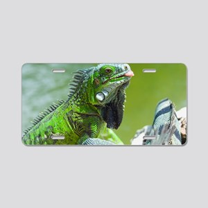 Green iguana Aluminum License Plate