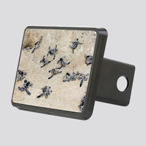 Green turtle hatchlings Rectangular Hitch Cover