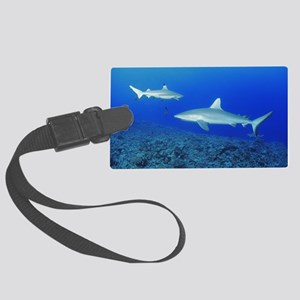 Grey reef shark and black-tip re Large Luggage Tag