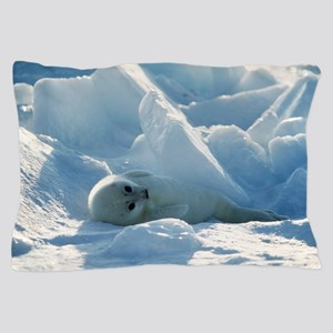 Harp seal pup Pillow Case
