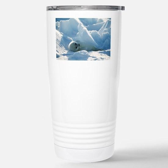 Harp seal pup Stainless Steel Travel Mug