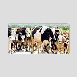 Herd of cows and goats Aluminum License Plate