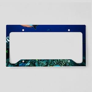 z6000252 License Plate Holder
