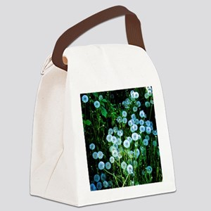 Alaska Flowers 9 Canvas Lunch Bag