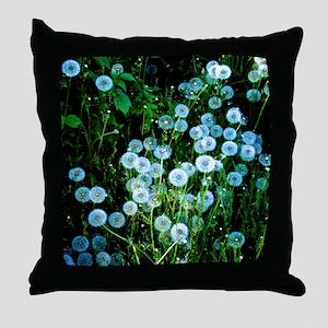 Alaska Flowers 9 Throw Pillow