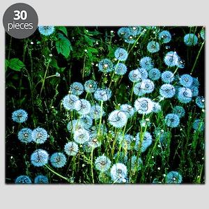 Alaska Flowers 9 Puzzle