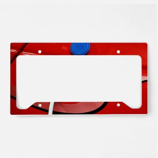 Electric car License Plate Holder