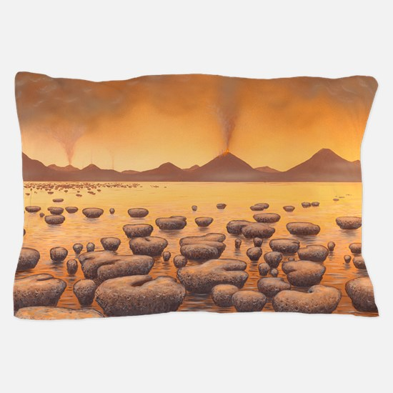 Early stromatolites, artwork Pillow Case