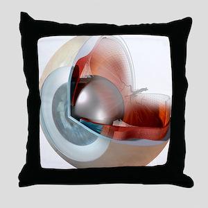 Eye anatomy, artwork Throw Pillow