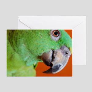 Delbert - Barbara Heidenreich Greeting Card