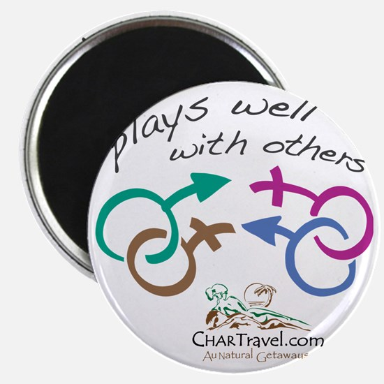 Plays Well with Others 10x10 dark colors Magnet