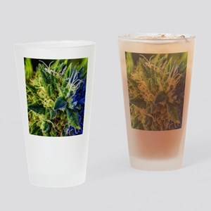 glistening trichomes Drinking Glass