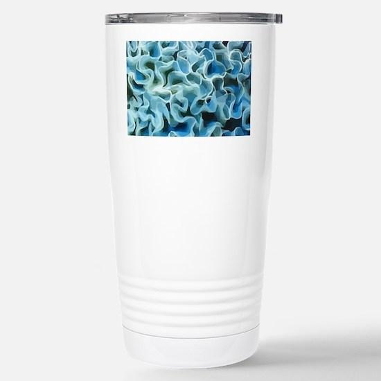 LGTRAY Stainless Steel Travel Mug