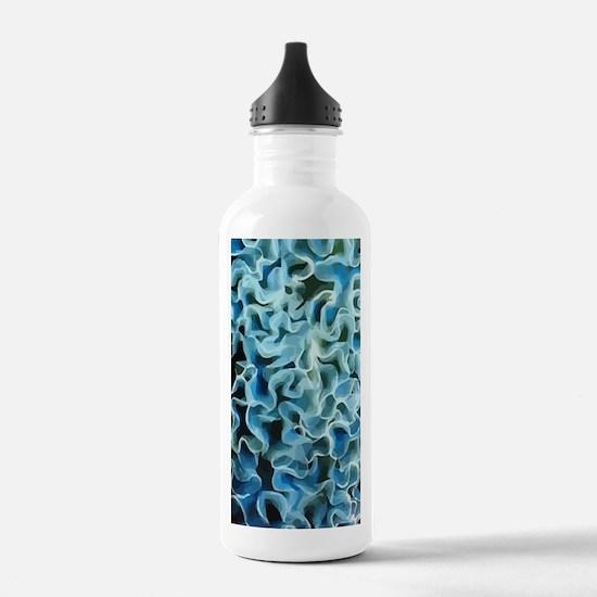 Galaxy Note 2 Water Bottle