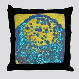 Chlamydia bacteria, TEM Throw Pillow