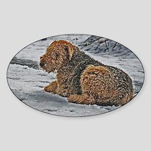Funkyartist Image 2 Sticker (Oval)