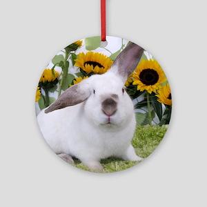 Presto with Sunflowers-1 Round Ornament