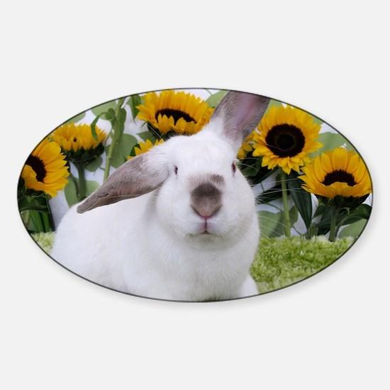 Presto with Sunflowers-1 Sticker (Oval)