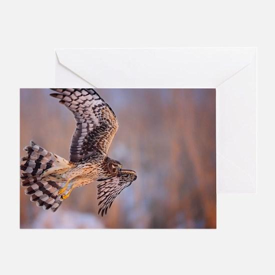 Marsh Hunter Greeting Card