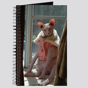 Hairless Kitty Journal