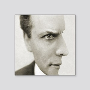 "Houdini Optical Illusion Ve Square Sticker 3"" x 3"""