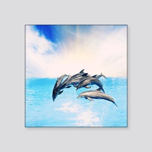 "Dolphins Square Sticker 3"" x 3"""