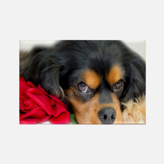 Cavalier King Charles Spaniel Wit Rectangle Magnet