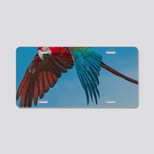 Green-winged Macaw Steve Du Aluminum License Plate