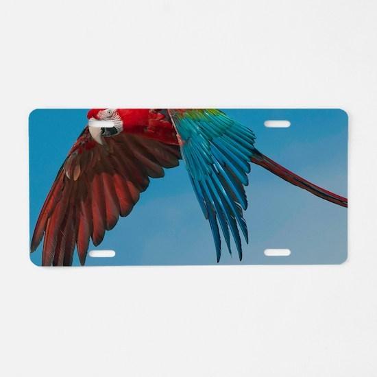 Green-winged Macaw Steve Du Aluminum License Plate