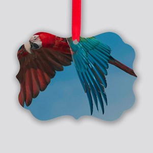 Green-winged Macaw Steve Duncan Picture Ornament