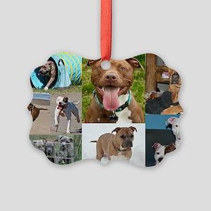 pit bull purse2 Picture Ornament