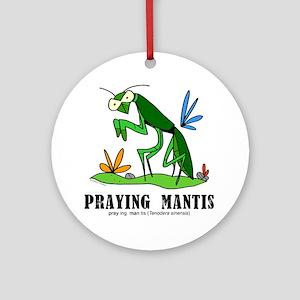 Cartoon Praying Mantis by Lorenzo Round Ornament