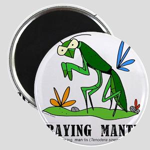 Cartoon Praying Mantis by Lorenzo Magnet