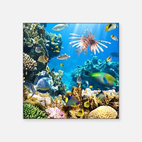 """Sea Life Square Sticker 3"""" x 3"""""""