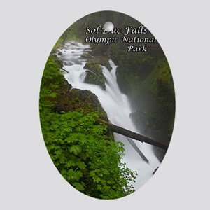 Sol Duc Falls Oval Ornament
