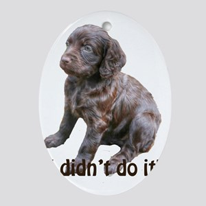 boykin spaniel puppy Oval Ornament
