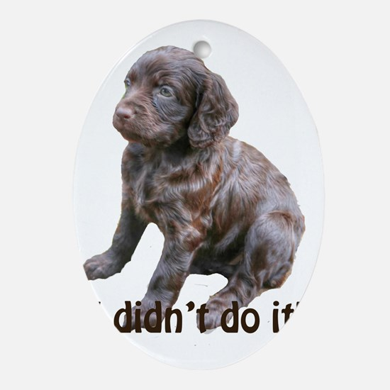 boykin spaniel puppy Oval Ornament
