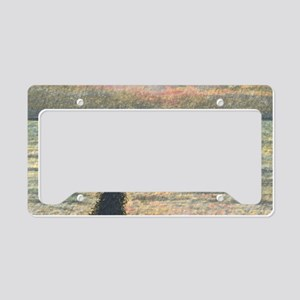 A Border Collie dog says hell License Plate Holder