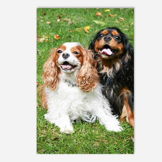 Happy Cavalier King Charl Postcards (Package of 8)