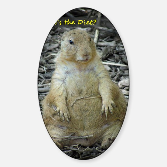 Hows the Diet? Sticker (Oval)