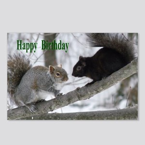 Black and gray squirrels. Postcards (Package of 8)