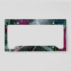 ow_Rectangular Canvas Pillow License Plate Holder