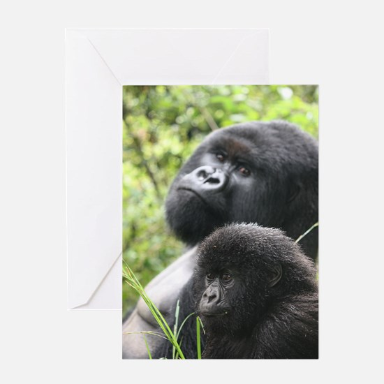 Mountain Gorilla Father  Son Greeting Card