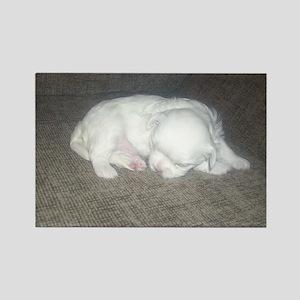 Tiny Pup Rectangle Magnet