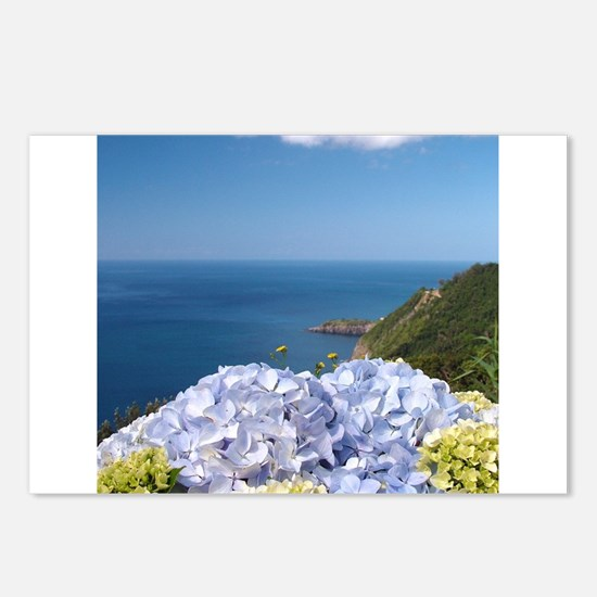Hydrangeas on blue Postcards (Package of 8)