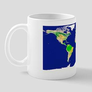 Earth's land cover classification, 2003 Mug