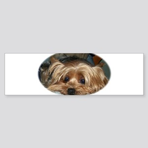 love my yorkie 2 Bumper Sticker