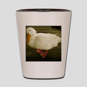 Pekin Duck Shot Glass